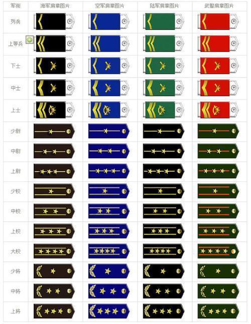 不同军衔的肩章标志图片