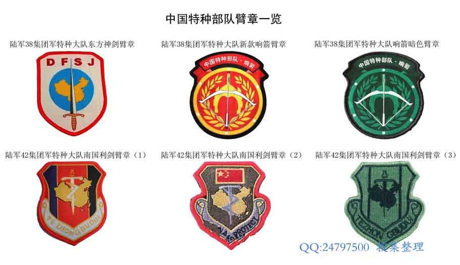中国特种部队臂章一览图片