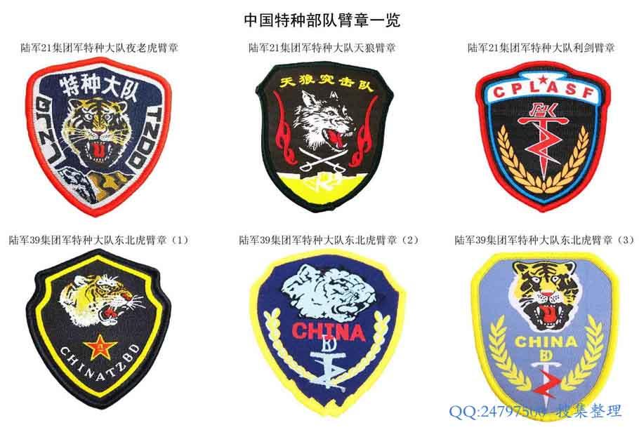 """组建起始,就有自己的部队标志符号,或者说""""兵种符号""""。虽然特种部队还不是一个独立的兵种,但是由于属于总部垂直指导管理作战部队,独立性还是很强的。 所以在上个世纪80年代末,相继组建的各个军区特种部队,都有统一的标志符号,一直到今天,这个标志符号还是统一的。只是各个部队根据自己的特点,衍生出来各自的符号,但是跟统一符号的关系一目了然。 闪电利剑臂章。这是中国海陆空三军特种部队的统一臂章标识。 TZBD构成闪电利剑,是""""特种部队""""的缩写。"""